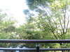 南東側バルコニーからの眺め(南東方向)[2019年8月11日撮影]