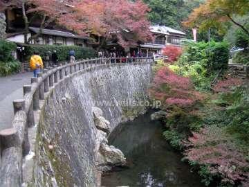滝道(箕面大滝に至る散歩道)0