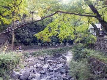 滝道(箕面大滝に至る散歩道)1