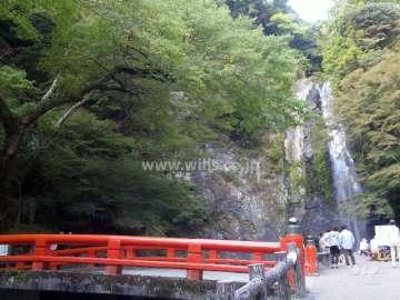 滝道(箕面大滝に至る散歩道)2
