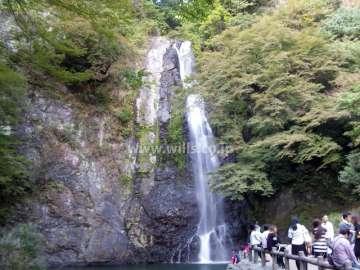 滝道(箕面大滝に至る散歩道)3