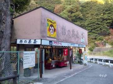 滝道(箕面大滝に至る散歩道)7