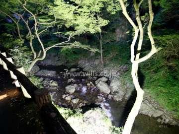 滝道(箕面大滝に至る散歩道)14