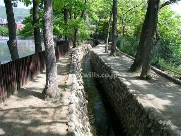 芦原公園1