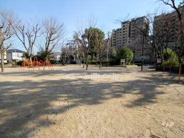 野寄公園0