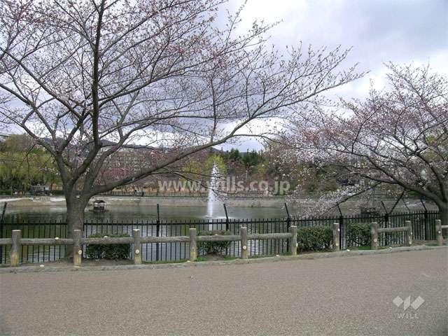 水月公園2