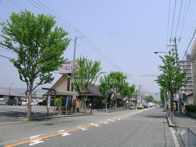 ロマンチック街道1