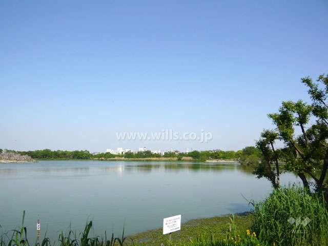 昆陽池公園8