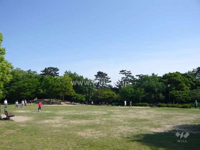 昆陽池公園10
