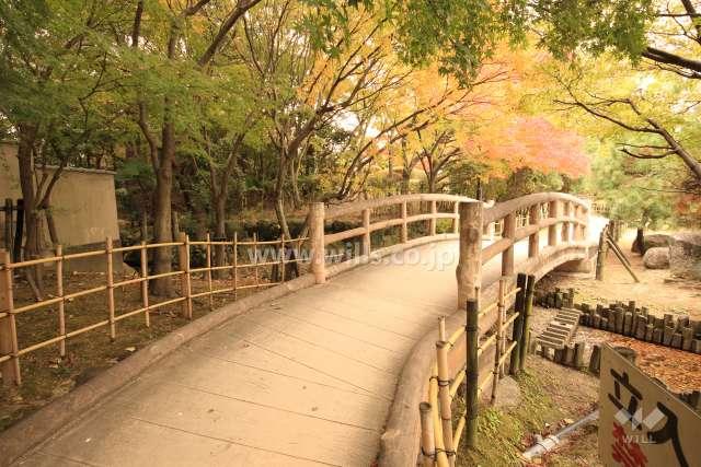 緑ケ丘公園2