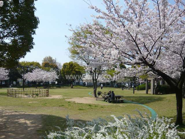 元浜緑地2