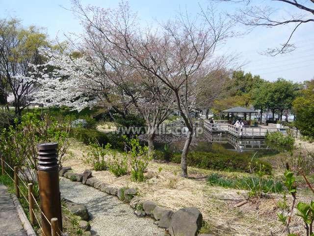 元浜緑地8