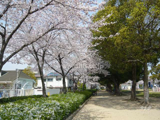 水明公園2