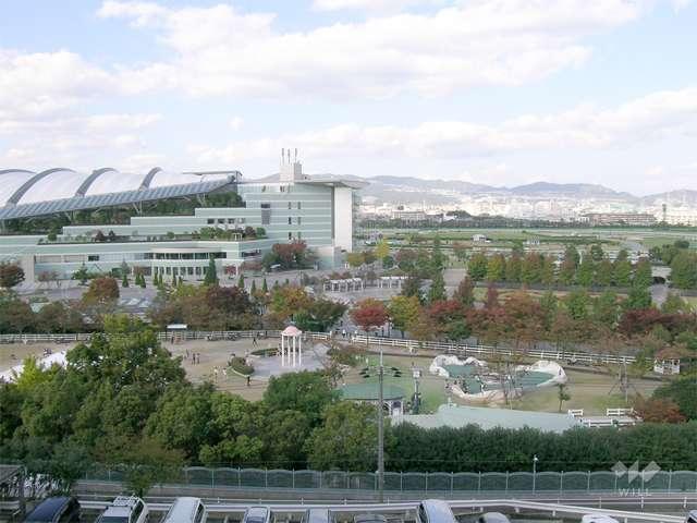 阪神競馬場2