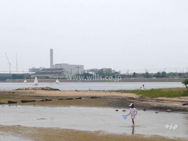 御前浜公園4