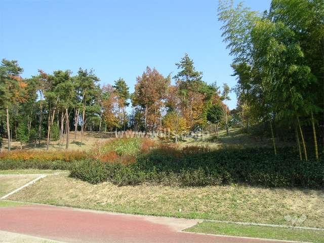 箕面東公園3