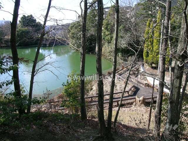 うぐいす池公園3