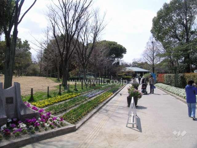 上坂部西公園1