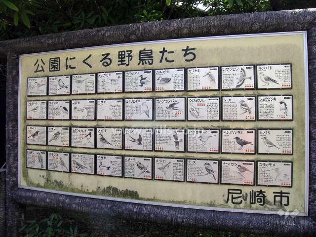 上坂部西公園8