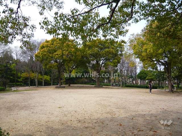 近松公園4