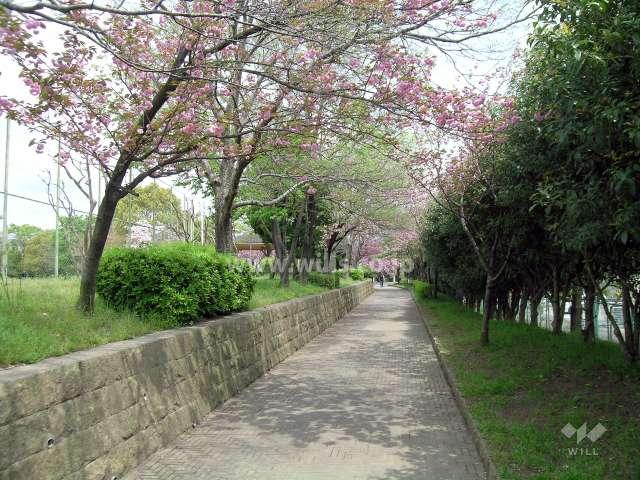 西脇公園3