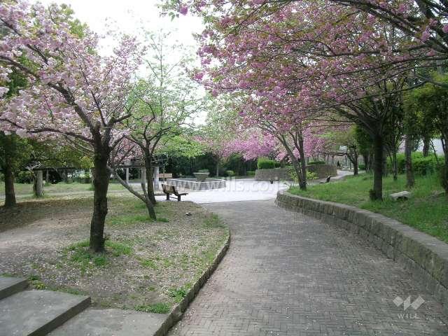 西脇公園7