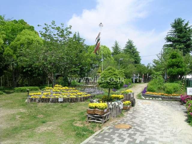 平木谷公園3