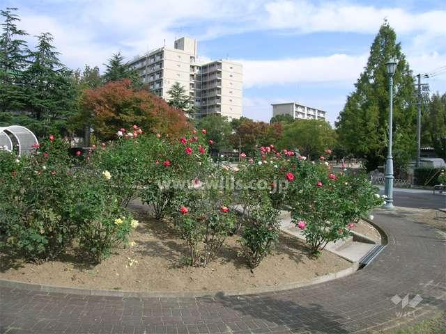 片山公園5