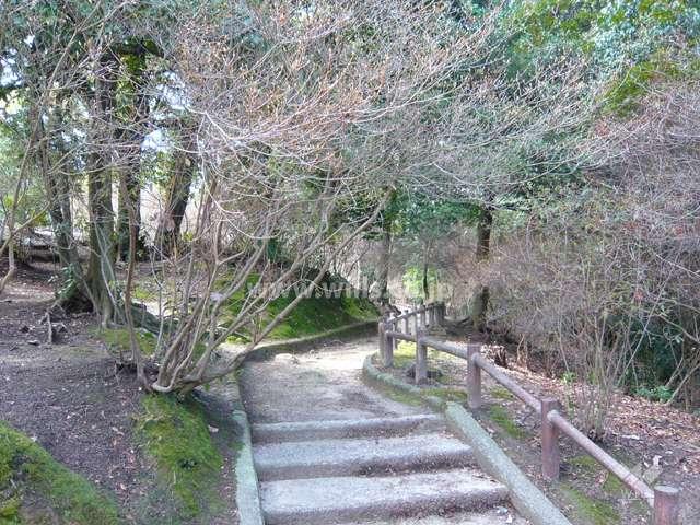 広田山公園6