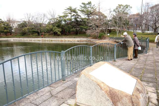 仲ノ池緑地公園3