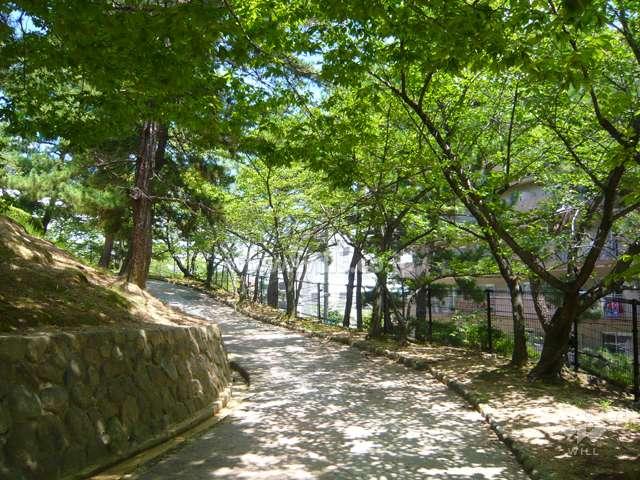 朝日ケ丘公園1