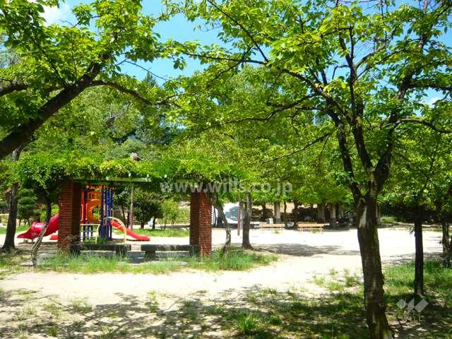 朝日ケ丘公園5
