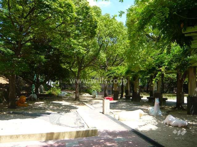 朝日ケ丘公園8