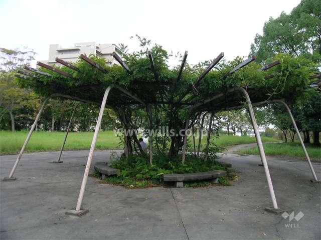 千里東町公園2