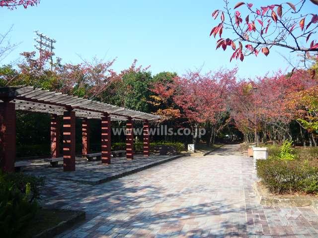 鳴尾浜臨海公園(北地区)3