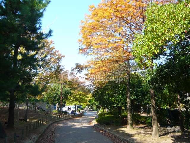鳴尾浜臨海公園(北地区)4