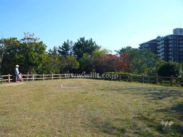 上の池公園7