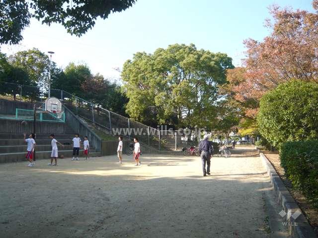 上の池公園9