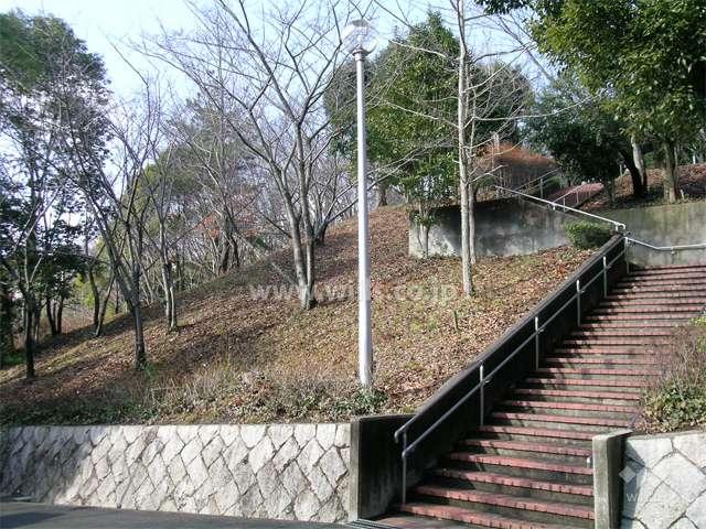 山麓公園4