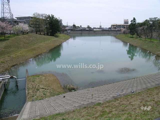 ニテコ池2