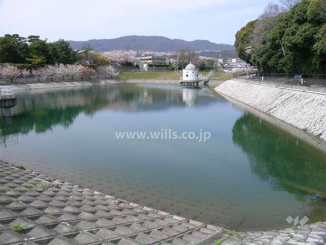 ニテコ池3