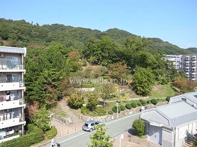 横岡公園1