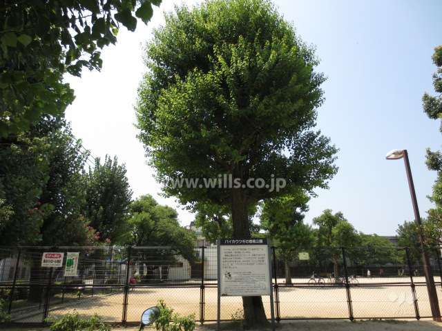 春風公園2