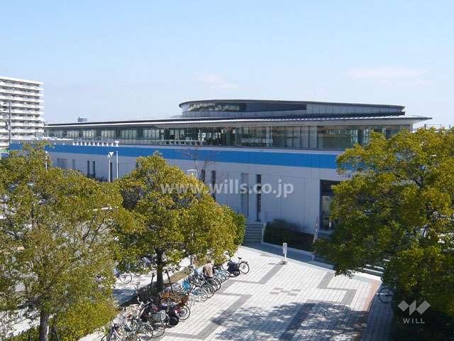 芦屋海浜公園プール1