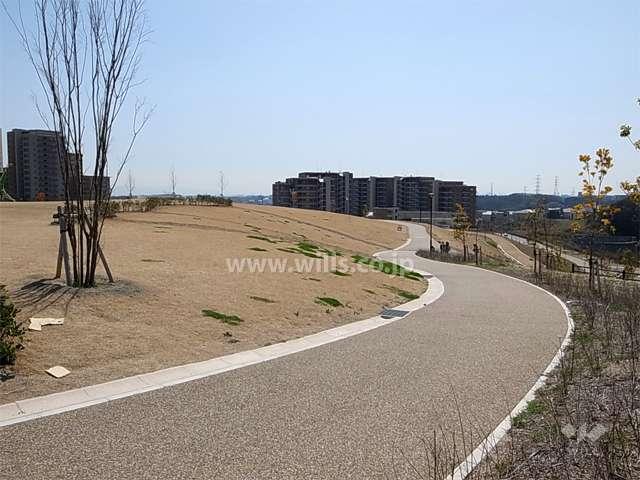 彩都西公園4