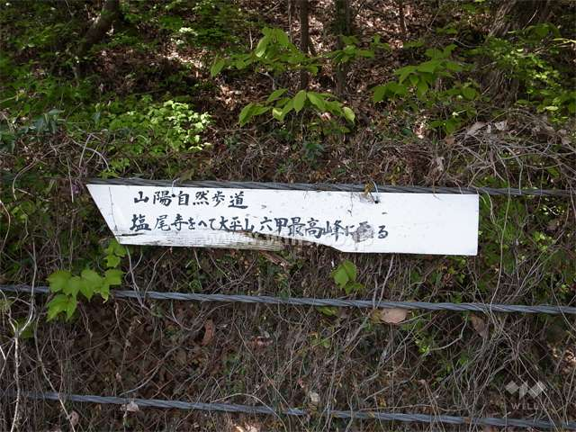 六甲山全山縦走路2