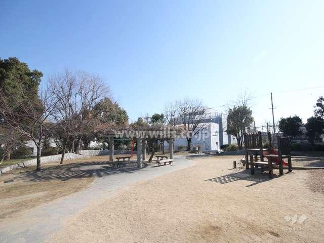 福井池公園1