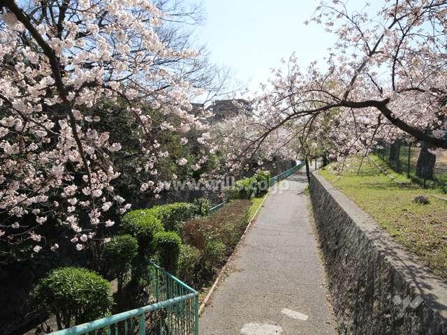 王子公園1