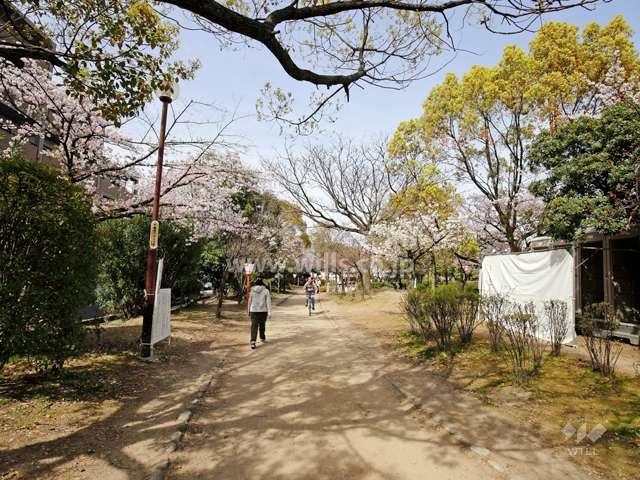 元茨木川緑地1