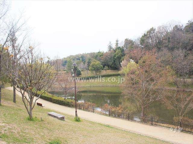 上の池公園1